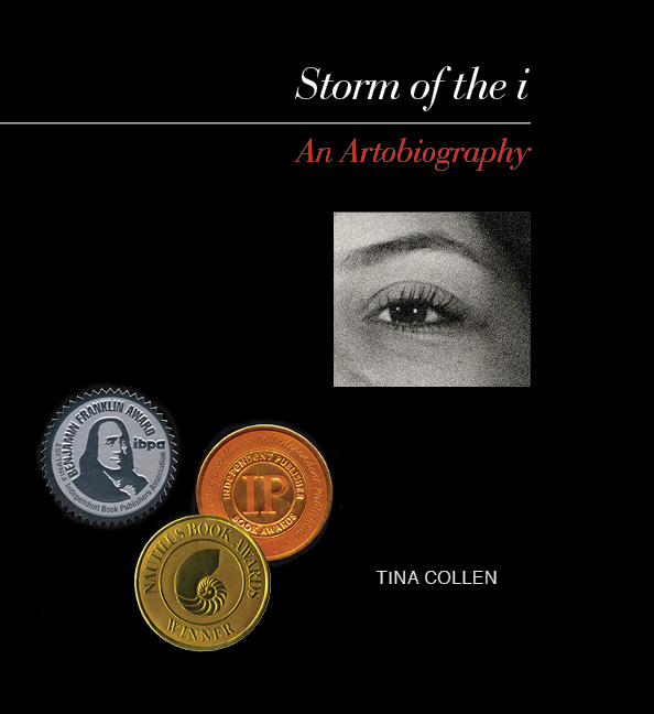 Storm of the i Book Cover with Award Medallions